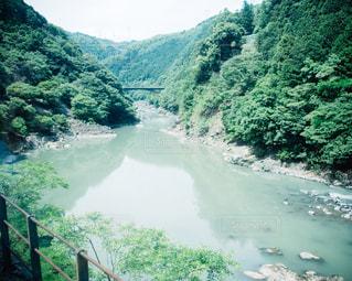 保津川の写真・画像素材[1002980]