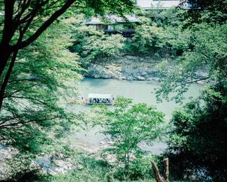 保津川を下る船の写真・画像素材[1002981]