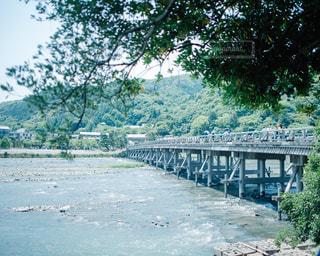 嵐山 渡月橋の写真・画像素材[1003009]