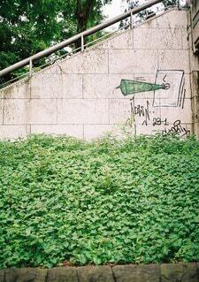 階段と草木の写真・画像素材[4158874]
