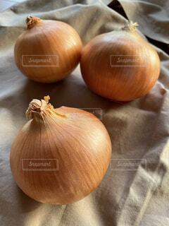 玉葱ですの写真・画像素材[4591827]