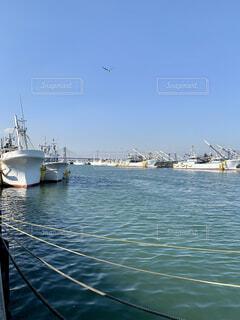 漁港の写真・画像素材[4178821]