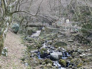 谷を流れる川の写真・画像素材[4201513]