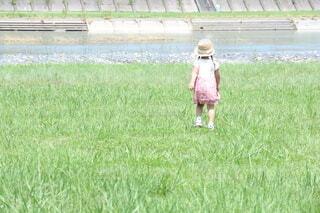 草むらを歩く女の子の写真・画像素材[4171475]