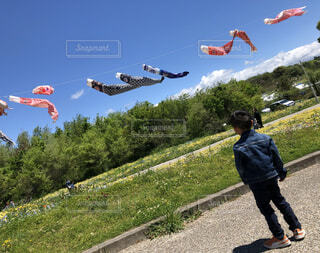 空高く泳ぐこいのぼりを見つめる男の子の写真・画像素材[4171890]