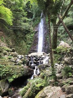 麓から見た滝の迫力の写真・画像素材[4173326]