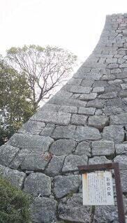 丸亀城石垣の写真・画像素材[4256939]