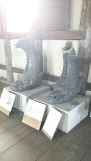 丸亀城大手一の門鯱瓦の写真・画像素材[4264057]