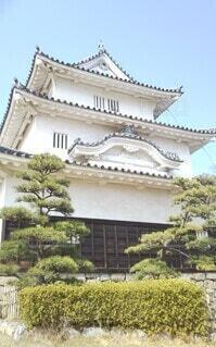 丸亀城天守の写真・画像素材[4264060]