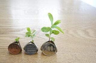 投資で運用益が増えるイメージの写真・画像素材[4459262]