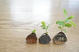 投資でお金が増えるイメージの写真・画像素材[4459271]