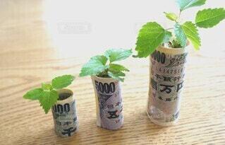お金が増えるイメージの写真・画像素材[4564745]