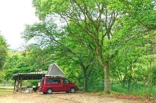 新緑が眩しいキャンプ場の写真・画像素材[4815059]