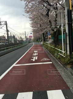No.245779 風景