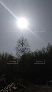 お空の写真・画像素材[4306160]