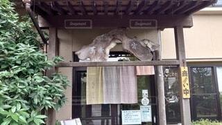 建物の上に座っている鳥の写真・画像素材[4182725]