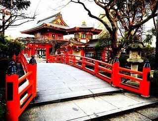 千葉神社の写真・画像素材[4185828]