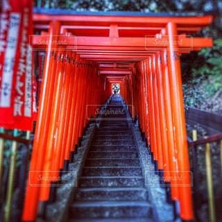 日枝神社の鳥居の写真・画像素材[4185991]