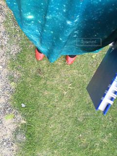 芝生の写真・画像素材[219702]