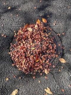 マンホールの落ち葉の写真・画像素材[4199223]