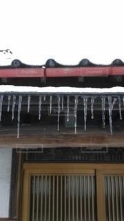 冬の写真・画像素材[4199139]