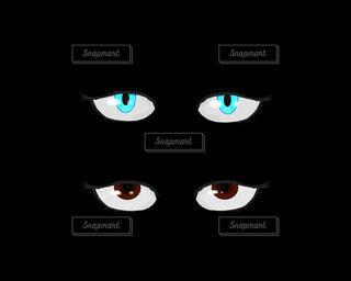 青い目と茶色の目のパーツの写真・画像素材[4211334]