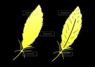 黄色の羽(グラデーション)の写真・画像素材[4352612]