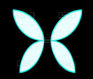 水色の妖精の羽の写真・画像素材[4547084]