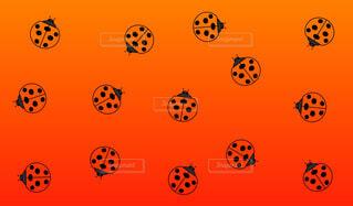 てんとう虫パターン赤背景の写真・画像素材[4578154]