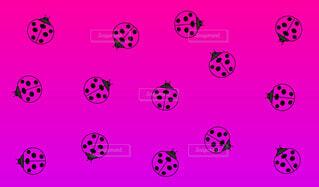 てんとう虫パターン紫背景の写真・画像素材[4578155]