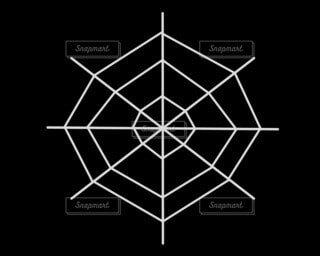 蜘蛛の巣の写真・画像素材[4745715]