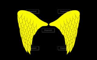 黄色の翼の写真・画像素材[4758346]