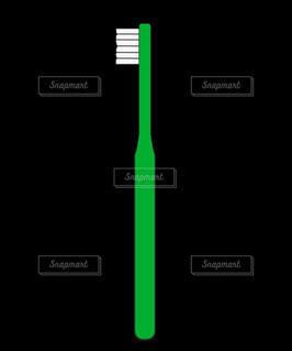 歯ブラシ(緑)の写真・画像素材[4872664]