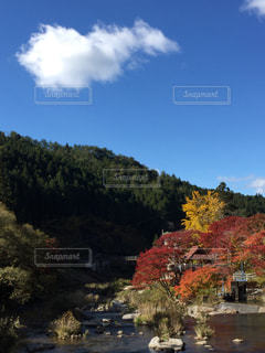 No.256087 風景