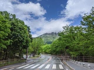 6月 雨上がりの二荒山の写真・画像素材[4215295]
