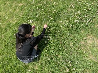 花冠を作る女の子の写真・画像素材[4411417]