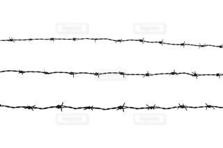 有刺鉄線の写真・画像素材[4385978]