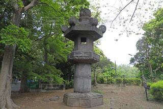 上野恩賜公園のお化け灯籠の写真・画像素材[4564969]
