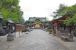 上野恩賜公園 上野東照宮の写真・画像素材[4591669]