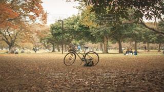 未舗装道路に駐車している自転車の写真・画像素材[4219908]