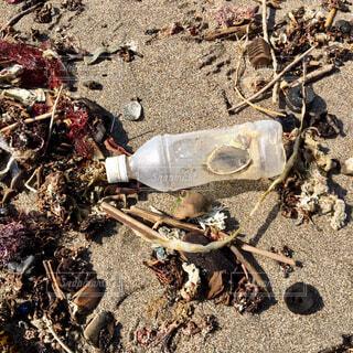 海辺のゴミ、ペットボトルの写真・画像素材[4275220]