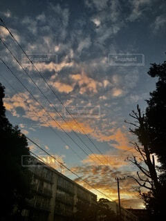 夏の朝焼けと団地と電線のシルエットの写真・画像素材[4740221]
