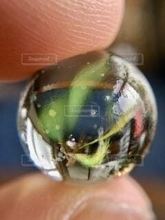 ビー玉を覗き込むの写真・画像素材[4826425]