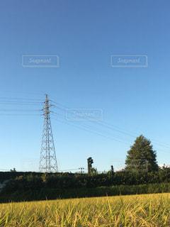 秋の空と鉄塔の写真・画像素材[772313]