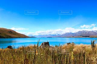 ニュージーランドのテカポ湖、星空が綺麗な町のうちの一つとして有名の写真・画像素材[4240590]