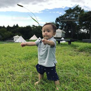 草の中に立っている間凧を保持している小さな子供の写真・画像素材[906317]