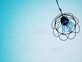 電球 - No.230505