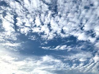 雨上がりの空の写真・画像素材[4535006]