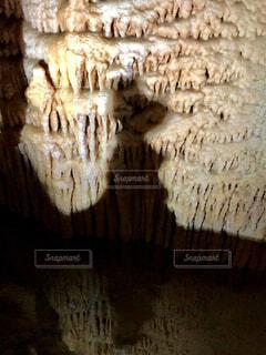 スヌーピー⁉️の写真・画像素材[4246743]