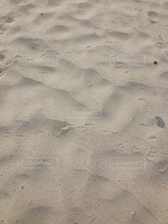 砂の写真・画像素材[182280]